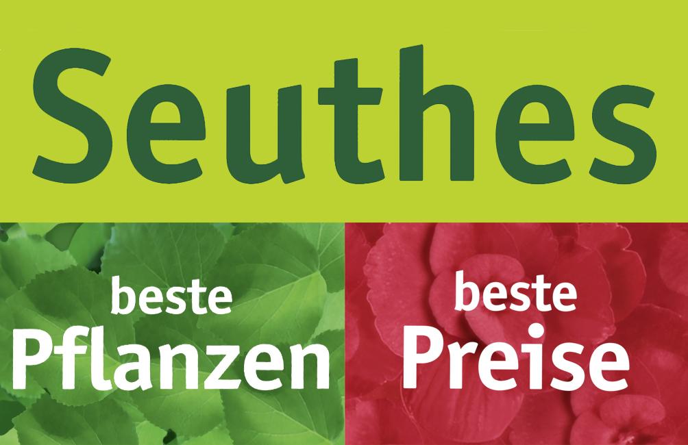 Seuthes Beste Pflanzen, beste Preise